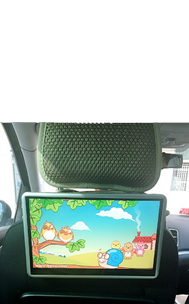 DVD Rear Entertainment System